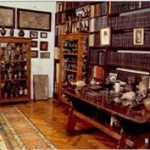 Freud studio