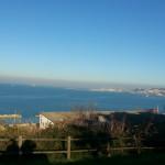 I fidanzati di Ancona ed altri adolescenti fuori controllo