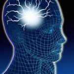 Neuroscienze e Freud