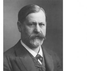 Freud un saggio un eroe
