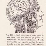 La terapia psicodinamica è efficace