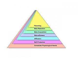 Nuova piramide di Maslow