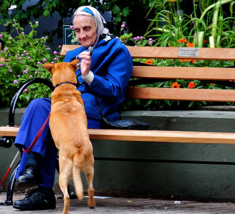 ospedalizzazione degli anziani