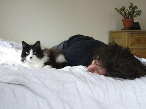 Un gatto per amico