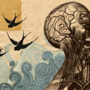 Psicologia umanistica